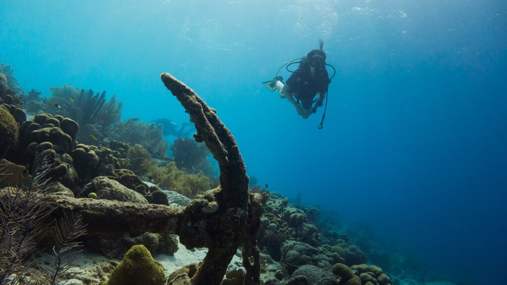 Anilao, Batangas Is Full Of Diving Points