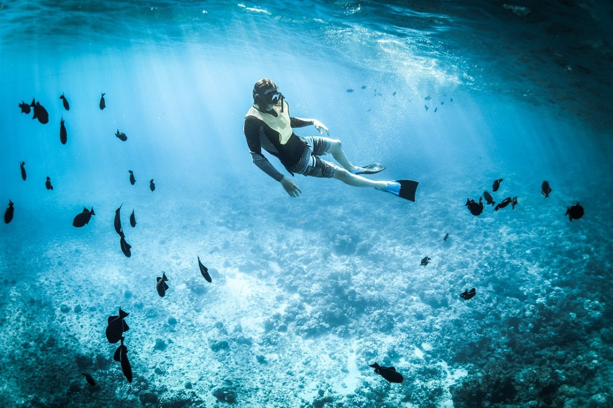 Try Snorkeling Or Free Diving